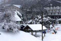 Falls Creek village bowl under a blanket of fresh snow